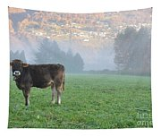 Cow On The Foggy Field Tapestry