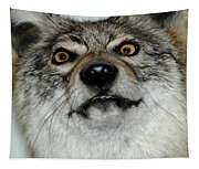 Crazy Like A Fox Tapestry