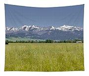 Crazy Mountain Range Tapestry
