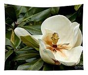 Creamy Magnolia Tapestry