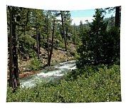 Creek Glen Alpine Creek Tapestry