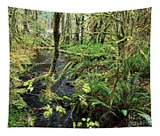 Creek In The Rain Forest Tapestry