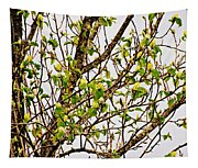 Cucumber Tree Blossoms Tapestry