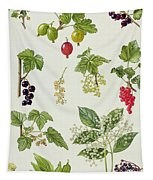 Currants And Berries Tapestry
