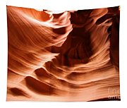 Curves In The Canyon Tapestry