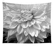 Dahlia In Black And White Tapestry