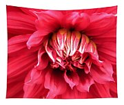 Dahlia In Red Tapestry