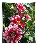 Dahlia Named Yoro Kobi Tapestry