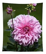 Dahlia Standout Tapestry