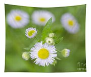 Daisy Flowers Tapestry