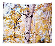 Dancing Birches Tapestry
