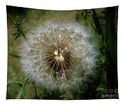 Dandelion Going To Seed Tapestry