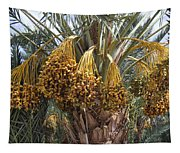 Date Palm In Fruit Tapestry