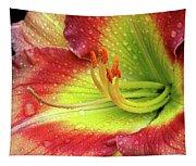 Daylily Tapestry
