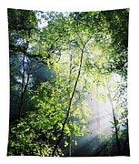 Deciduous Wood, Killarney National Tapestry