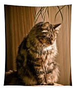 Deep In Kitty Thought Tapestry