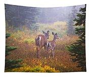 Deer In The Fog In Paradise Park In Mt Tapestry