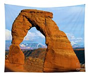 Delicate Arch Closeup Tapestry