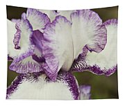 Delicate Ruffles 1 Tapestry