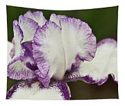 Delicate Ruffles 3 Tapestry