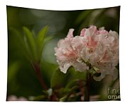 Delicately Peach Tapestry