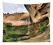 Demon Canyon Tapestry