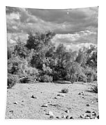 Desert Cloud Bw Palm Springs Tapestry