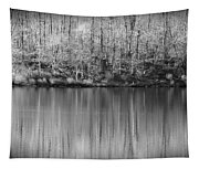 Desolate Splendor Bw Tapestry