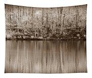Desolate Splendor S Tapestry