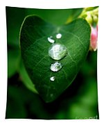 Dew Drops Tapestry