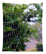 Dewdrops Dimension Tapestry