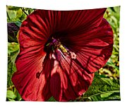 Dinner Plate Hibiscus Tapestry
