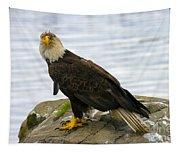 Dirty Bird Tapestry