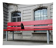 Dog On A Big Red Bench Tapestry