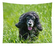 Dog On The Grass Tapestry