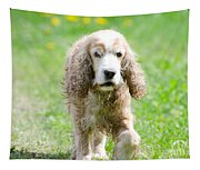 Dog On The Green Field Tapestry