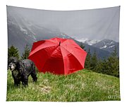 Dog On The Top Of A Mountain Tapestry