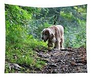 Dog Walking Tapestry