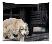Dog Walking Under A Train Wagon Tapestry