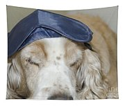 Dog With Sleep Mask Tapestry