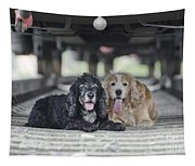 Dogs Lying Under A Train Wagon Tapestry