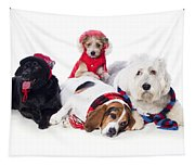Dogs Wearing Winter Accessories Tapestry