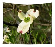Dogwood Blossome Tapestry