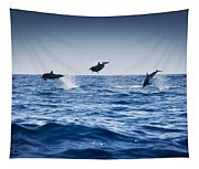 Dolphins Playing In The Ocean Tapestry