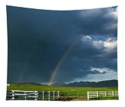 Double Rainbow Tapestry