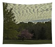 Douglassville Delight Tapestry