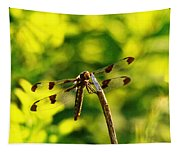 Dragonfly In Green Tapestry
