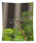 Dragonfly Smile Tapestry