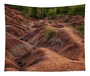 Drainage Tapestry
