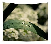 Droplets Tapestry
